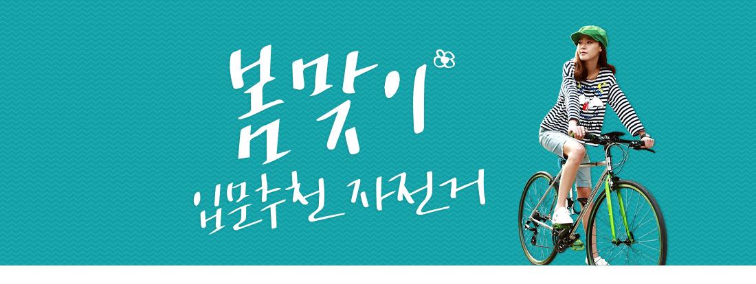 봄맞이입문추천